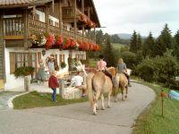 bayerwald-freizeit-linknhof