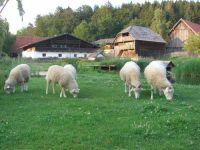 museumsdorf-bayerischer-wald